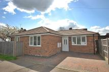Bungalow for sale in Mountfields Drive...
