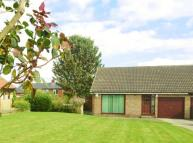 Semi-Detached Bungalow to rent in Pickles Lane...