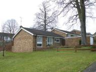 Bungalow for sale in Campleshon Road...