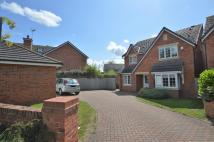 4 bed Detached house in Pippin Lane, Rossett