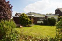 Detached Bungalow for sale in Mount Way, Waverton...
