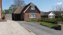 Detached Bungalow in Locks Heath