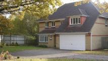 5 bed Detached property to rent in Horton Heath