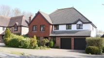 Detached property for sale in Clydesdale Road...