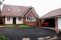 3 bedroom Detached property for sale in Pool Street, Woodsetton...