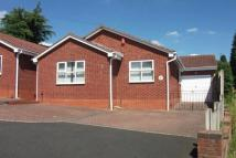 Detached Bungalow for sale in Ash Grove, Gornal Wood...