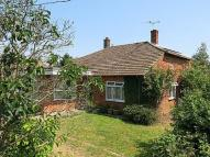 Detached Bungalow for sale in Manor Road, Wivenhoe
