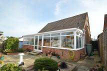 3 bedroom Detached Bungalow for sale in BRADING PO36 0JB