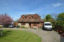 GODSHILL Detached house for sale