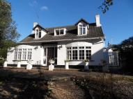 Detached Bungalow for sale in RYDE          PO33 1LL