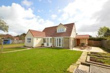 Detached Bungalow for sale in RYDE     PO33 1QD