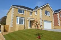 4 bed new home for sale in RYDE               PO33...