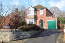 Detached property for sale in BINSTEAD OUTSKIRTS