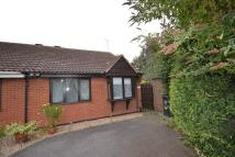 Semi-Detached Bungalow to rent in Petworth Drive, Leicester