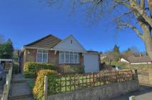 3 bed Detached Bungalow in Caterham Drive...