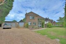 Detached property for sale in Lagham Park...