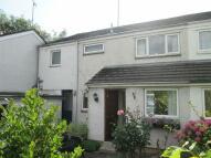 4 bedroom semi detached home in Meadow Grove