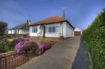 3 bedroom Detached Bungalow in Castlegate Drive...