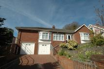 56 Hollow Lane Detached Bungalow for sale