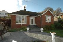 Detached Bungalow in 58 Hollow Lane...