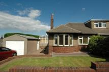 2 bed Semi-Detached Bungalow for sale in 3 Arundel Drive...