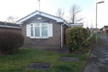 Bungalow to rent in Speak Close, Wakefield