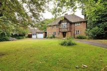 5 bedroom Detached home in 11 Farquhar Road