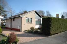 3 bed Detached Bungalow in 17...