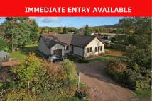 4 bed Detached Bungalow in 1 Polinard, Comrie...