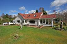 Calluna Detached house for sale
