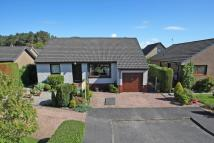 Detached Bungalow in 14 Kenworthy Avenue...