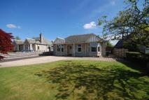 5 bed Detached Bungalow in 42, Bonhard Road, Scone...