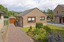 Detached Bungalow in 4 Knockard Avenue...