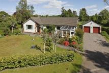 4 bedroom Detached Bungalow for sale in Meadowbank...