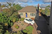 2 bed Detached Bungalow in 19 High Street...