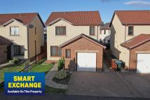 4 bed Detached property for sale in 5 Sidey Place, Hilltop...