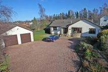 4 bed Detached Bungalow for sale in Treetops, 4, Mare Park...
