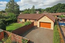 4 bed Detached Bungalow for sale in Ardachaidh, Main Road...