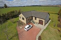 3 Detached Bungalow for sale