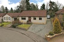 4 bed Detached Bungalow in 14, Glenorchil Crescent...