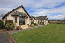 Detached Bungalow in The Shannon, Denfield...