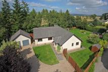 4 bedroom Detached Bungalow for sale in 7 Craig Place, MADDERTY...