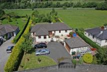 4 bed Detached house in Walnut Lodge...