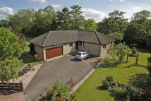 Detached Bungalow in Riverdene, 3, Deer Park...