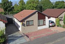 2 bed Detached Bungalow in 8 Huntingtower Crescent...