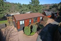 Detached house for sale in Curlew...