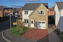 4 bedroom Detached home in 37 Cooper Drive, PERTH