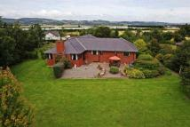 Detached Bungalow for sale in Kinclaven, The Grange...