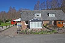 3 bed semi detached home in 6 Dalcroy Crescent...