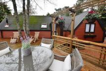 Badger Lodge Lodge